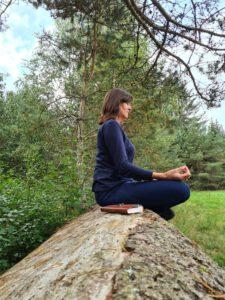 Meditative Visionssuche